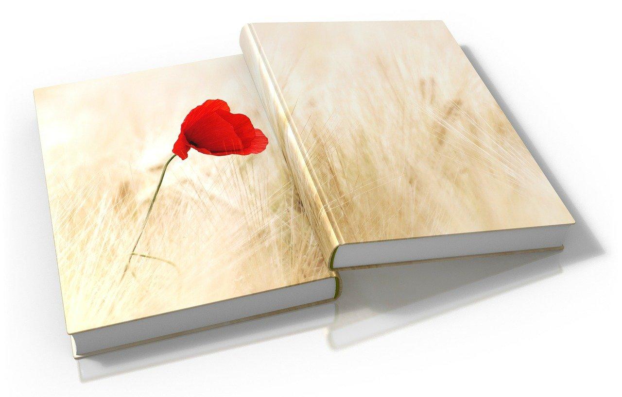 book, books, two